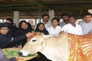 मुस्लमान गाय की पूजा