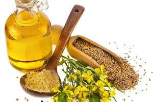 सरसों का तेल बालों के लिए mustard oil benefits in hindi