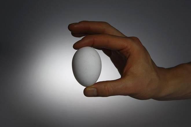 अब अंडे के दामों में बढ़ोतरी