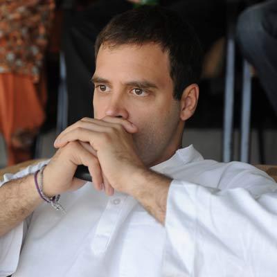 कांग्रेस उपाध्यक्ष राहुल गाँधी