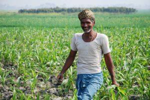 भारत खेती निवेश संयुक्त राष्ट्र