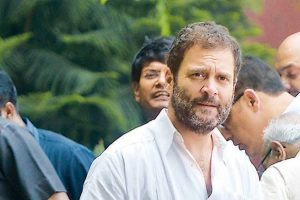 हिमांचल प्रदेश,कांग्रेस अध्यक्ष राहुल गाँधी