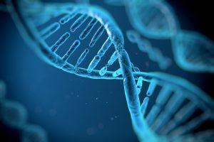 बायोटेक्नोलॉजी biotechnology in hindi