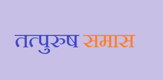 तत्पुरुष समास tatpurush samas in hindi