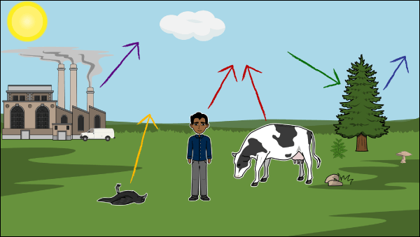 कार्बन चक्र carbon cycle in hindi