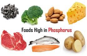 फ़ास्फ़रोस युक्त खाद्य पदार्थ phosphorus foods in hindi