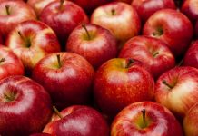 सेब facts about apple in hindi