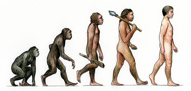 मानव विकास human evolution in hindi