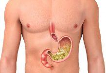 stomach information in hindi पेट के बारे में जानकारी