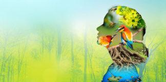 biodiversity in hindi