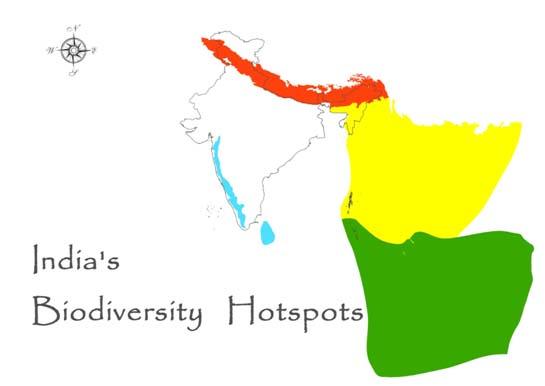 biodiversity hotspot in india