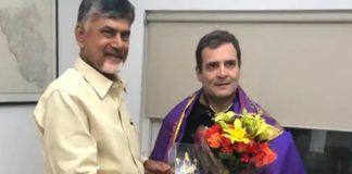 rahul gandhi and chandrbabu naydu