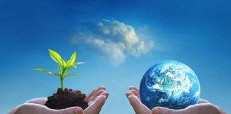 essay on save environment in hindi