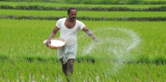 essay on indian farmer in hindi
