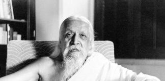 essay on sri aurobindo in hindi