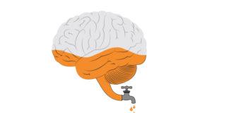 essay on brain drain in hindi