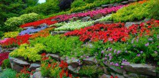 essay on garden in hindi